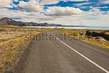 Vide route Islande pays étroite été Photo stock © tomasz_parys