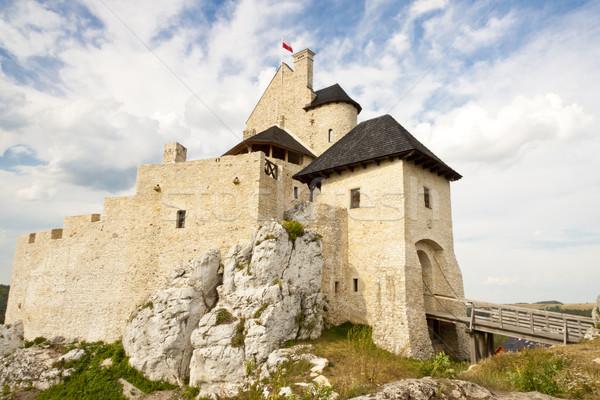 Château ensoleillée herbe bâtiment nature montagne Photo stock © tomasz_parys