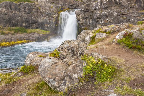 急速 川 アイスランド 草 風景 滝 ストックフォト © tomasz_parys