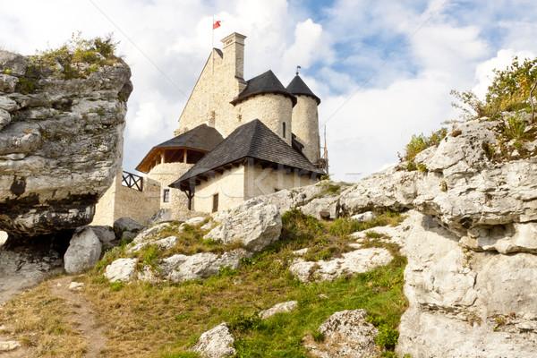 üst kale görmek çim Bina doğa Stok fotoğraf © tomasz_parys