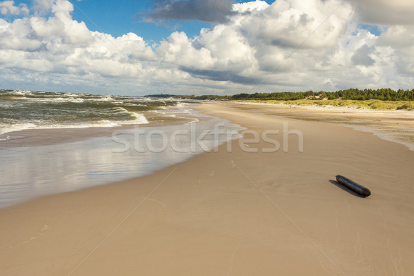 Polish sandy beach in Leba. Stock photo © tomasz_parys