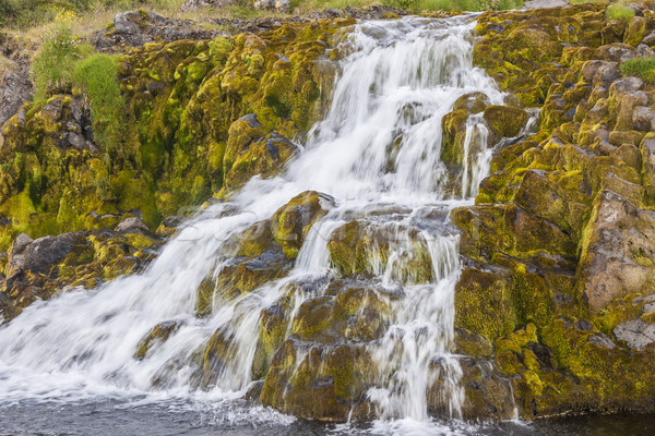 çağlayan İzlanda büyük çim manzara taş Stok fotoğraf © tomasz_parys