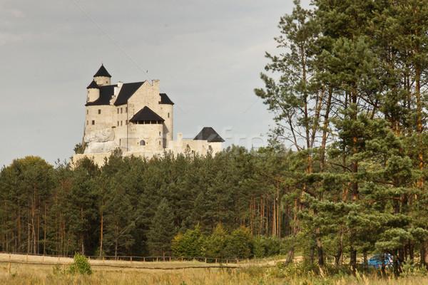 замок Польша регион Европа трава здании Сток-фото © tomasz_parys