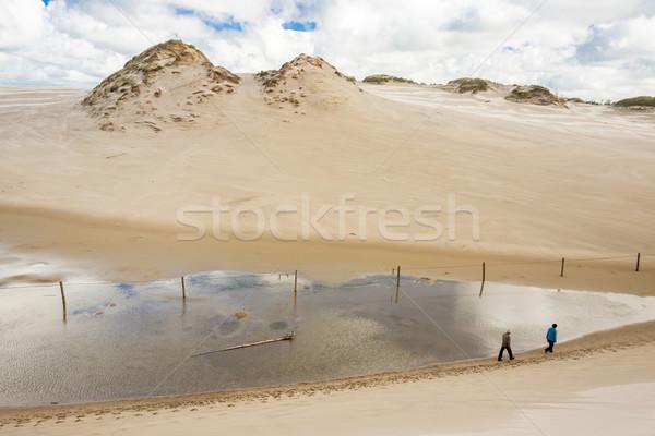 View from big dune - Leba, Poland. Stock photo © tomasz_parys