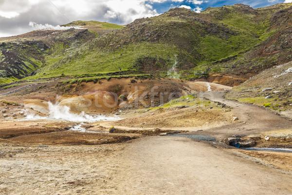 Iceland - geothermal area near Grindavik. Stock photo © tomasz_parys