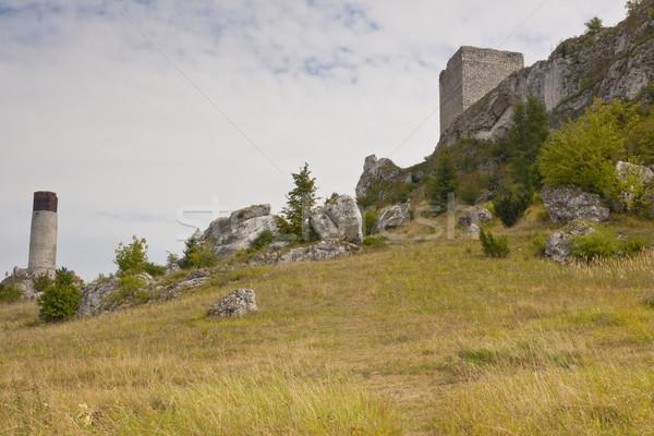 Widoku starych zamek region Polska trawy Zdjęcia stock © tomasz_parys