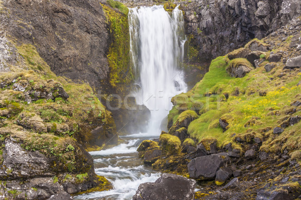 Beauty waterfall - Iceland. Stock photo © tomasz_parys