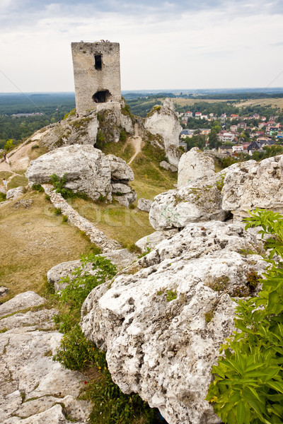 Vieux fortification ville Pologne herbe montagne Photo stock © tomasz_parys
