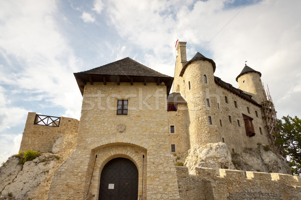 Front of castle in Bobolice - Poland, Silesia. Stock photo © tomasz_parys