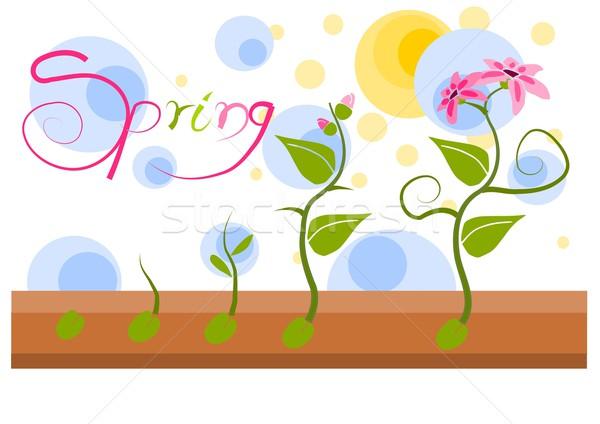 Plant vegatation in spring time - vector illustration Stock photo © tomasz_parys