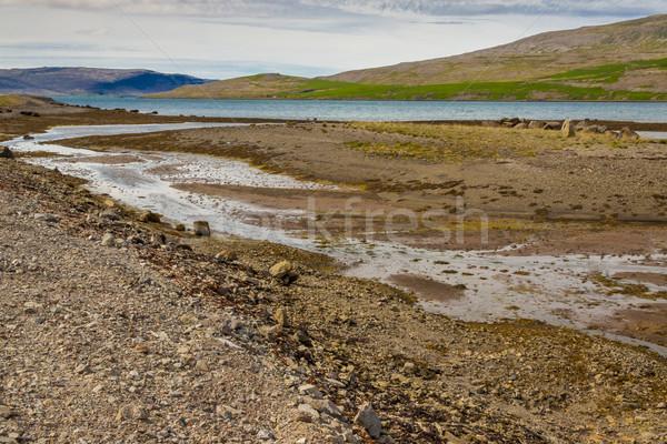 Islândia nublado verão dia grama natureza Foto stock © tomasz_parys