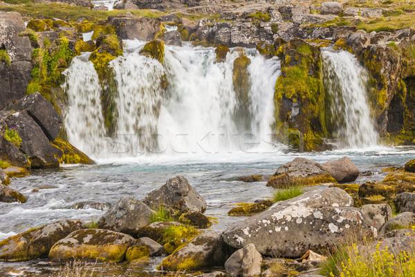 çağlayan İzlanda görmek çim manzara taş Stok fotoğraf © tomasz_parys