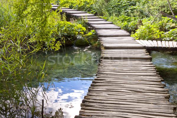 Fából készült ösvény Horvátország öreg unesco park Stock fotó © tomasz_parys