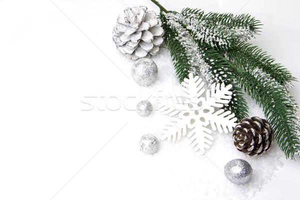 Noel dekorasyon şube çam önemsiz şey Stok fotoğraf © Tomjac1980