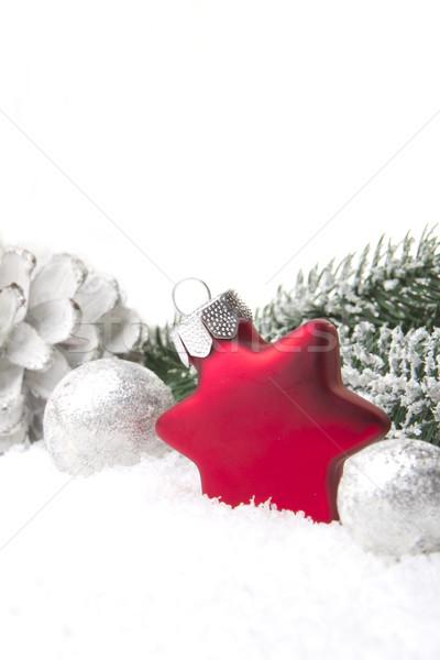 Noel süs dekorasyon şube çam Stok fotoğraf © Tomjac1980