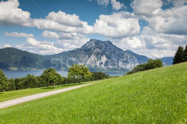 Beautiful Austrian landscape Stock photo © tommyandone