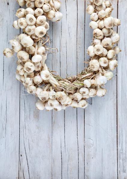 Aglio insieme chiodi di garofano gruppo agricoltura vegetali Foto d'archivio © tommyandone