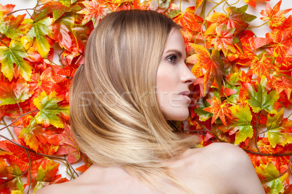 Jonge blond model bladeren zijaanzicht vrouw Stockfoto © tommyandone