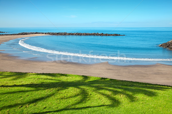 Strand tenerife populair toeristische bestemming water Stockfoto © tommyandone