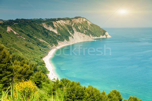 Italian beach from a viewpoint  Stock photo © tommyandone