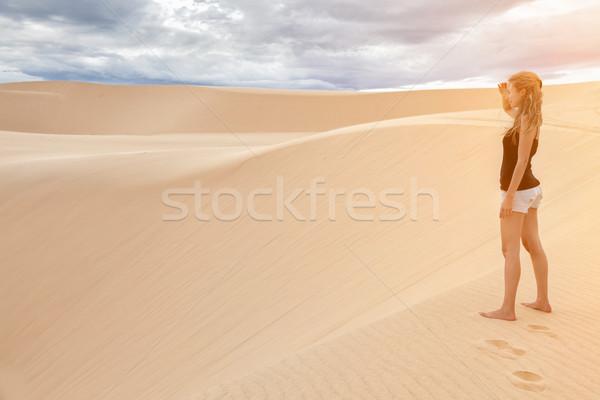 Sable blanc Viêt-Nam célèbre nature paysage été Photo stock © tommyandone
