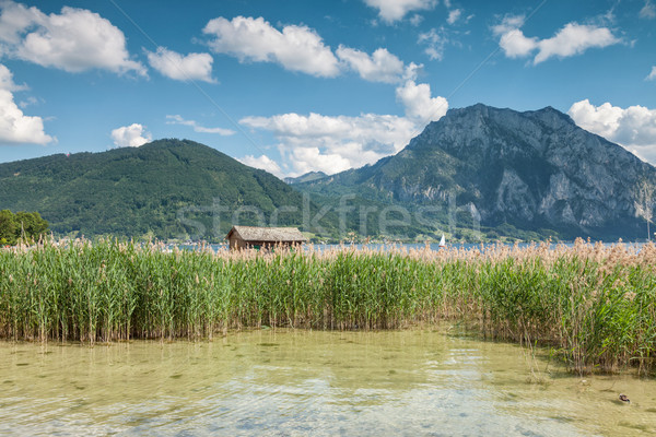 Lake Traunsee in Austria Stock photo © tommyandone