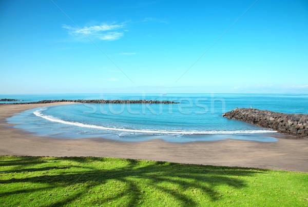 Plaj tenerife turist hedef su Stok fotoğraf © tommyandone