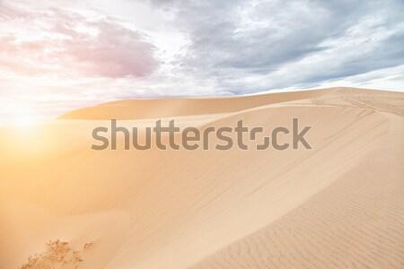 White sand dunes in Mui Ne, Vietnam Stock photo © tommyandone