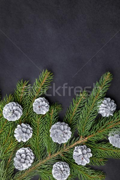 クリスマス 銀 伝統的な 冬 レトロな ストックフォト © tommyandone