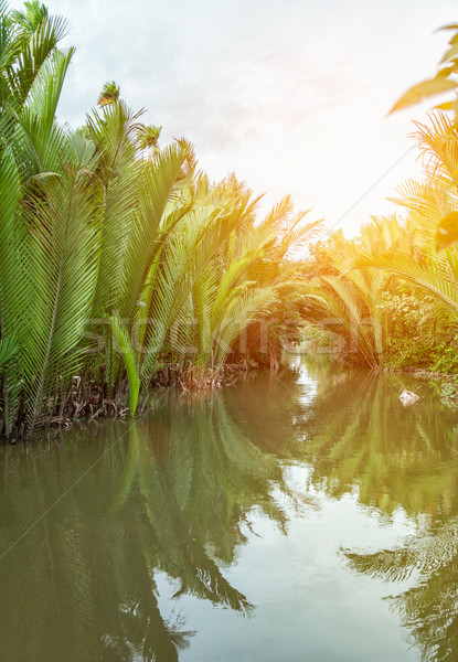 Famous destination on the Mekong delta in Vietnam Stock photo © tommyandone