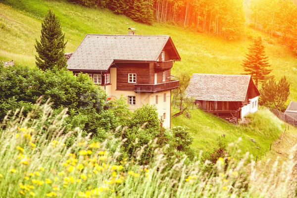 Beautiful holiday home in the Alps Stock photo © tommyandone