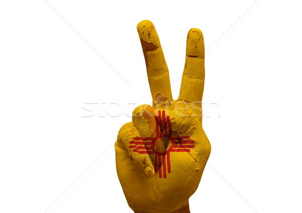 Kéz készít felirat grunge zászló festett Stock fotó © tony4urban