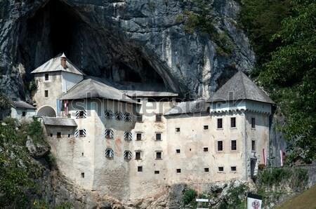Kasteel Slovenië middeleeuwse mijlpaal architectuur berg Stockfoto © tony4urban