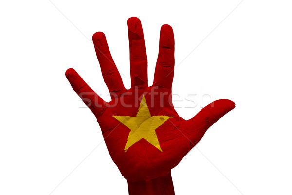 Palm флаг Вьетнам человека стороны кулаком Сток-фото © tony4urban