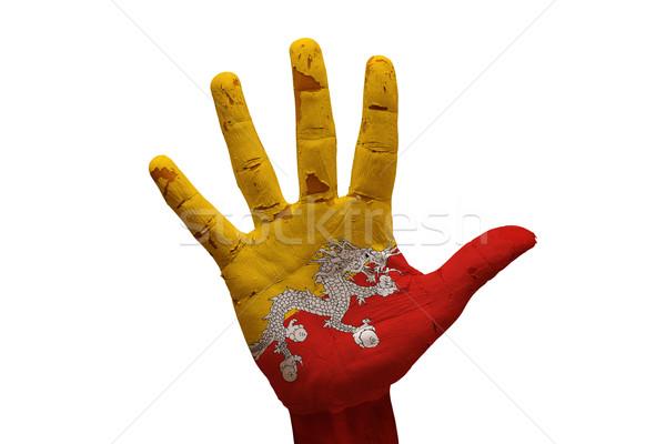 Palm vlag Bhutan man hand geschilderd Stockfoto © tony4urban