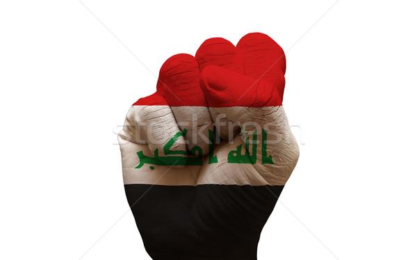 flag fist Stock photo © tony4urban