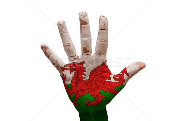 Palma bandera gales hombre mano puno Foto stock © tony4urban
