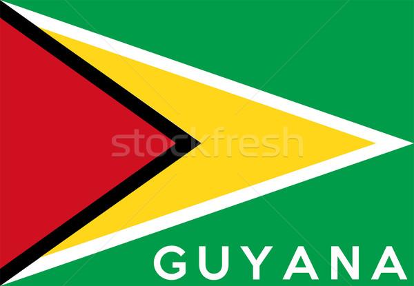 Zászló Guyana nagy méret illusztráció vidék Stock fotó © tony4urban
