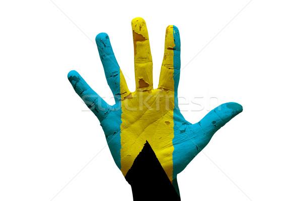 Pálma zászló Bahamák férfi kéz festett Stock fotó © tony4urban