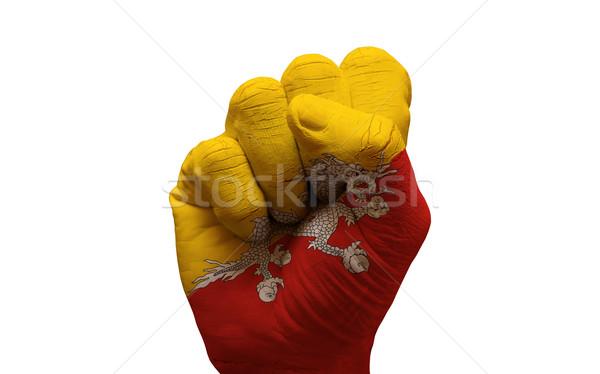 fist flag Stock photo © tony4urban