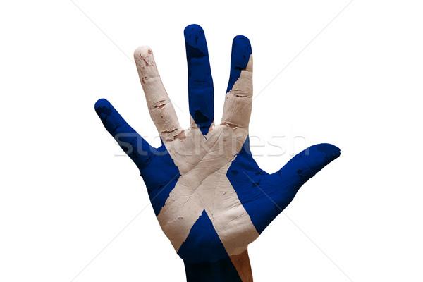Palma bandeira escócia homem mão pintado Foto stock © tony4urban