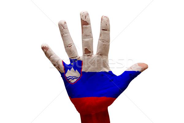 Palm bandiera Slovenia uomo mano verniciato Foto d'archivio © tony4urban
