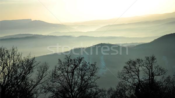 Sis buğu manzara tepeler Romanya gökyüzü Stok fotoğraf © tony4urban