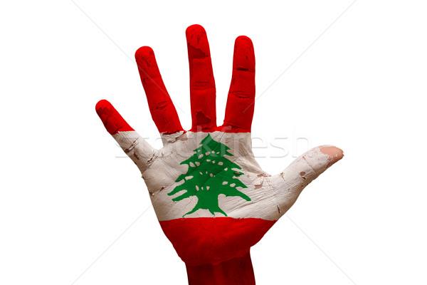 Palm флаг Ливан человека стороны окрашенный Сток-фото © tony4urban