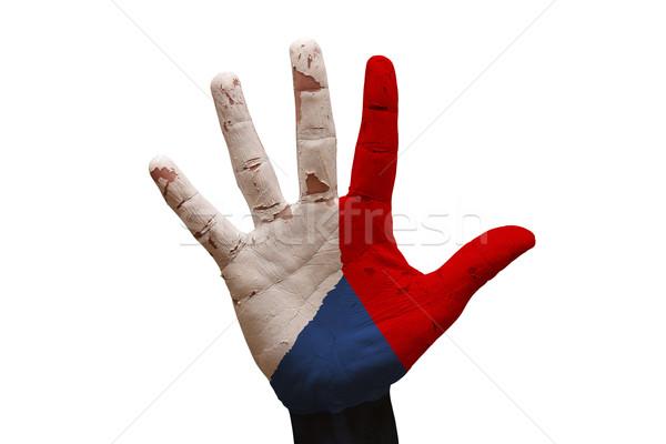Palm vlag Tsjechische Republiek man hand geschilderd Stockfoto © tony4urban