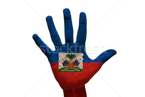 Palmiye bayrak Haiti adam el boyalı Stok fotoğraf © tony4urban