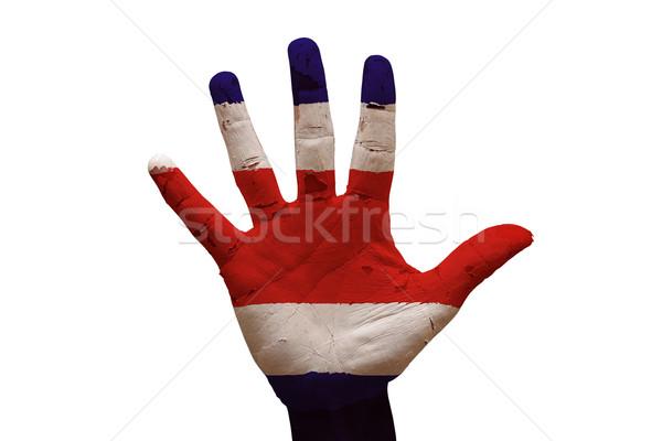 Pálma zászló Costa Rica férfi kéz festett Stock fotó © tony4urban
