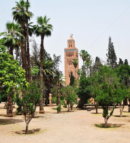 モスク 庭園 市 モロッコ ランドマーク アーキテクチャ ストックフォト © tony4urban
