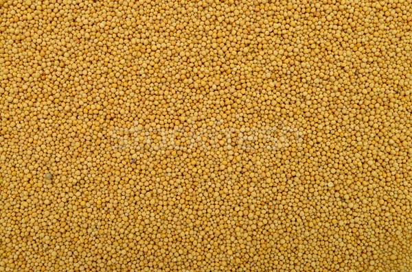 マスタード 種子 テクスチャ 黄色 食品 成分 ストックフォト © tony4urban
