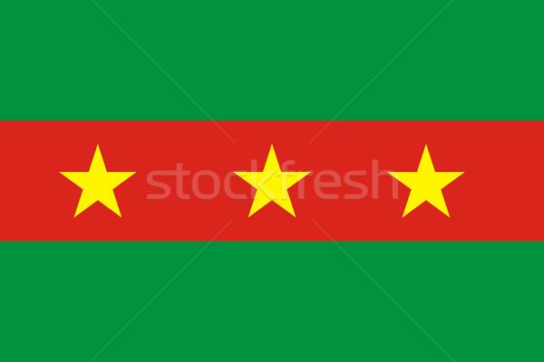 ewe flag Stock photo © tony4urban